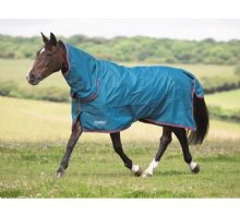 Shires Tempest Pony Lite Combo